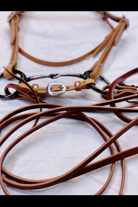 Split Rein Bridle Set | Another View