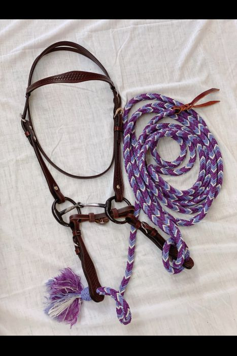 Dark Brown Bridle