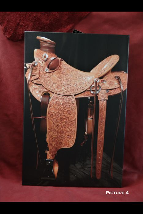 Canvas Saddle Picture   Another View
