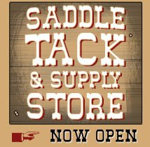 Saddles and Tack for sale