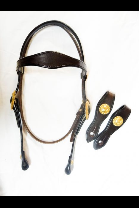 Dark Brown Headstall with Brass/Silver Buckles