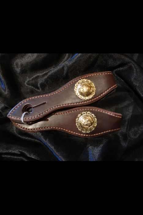 Dark Brown Headstall with Brass/Silver Buckles | Another View